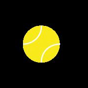 Logo Viking Tournaments